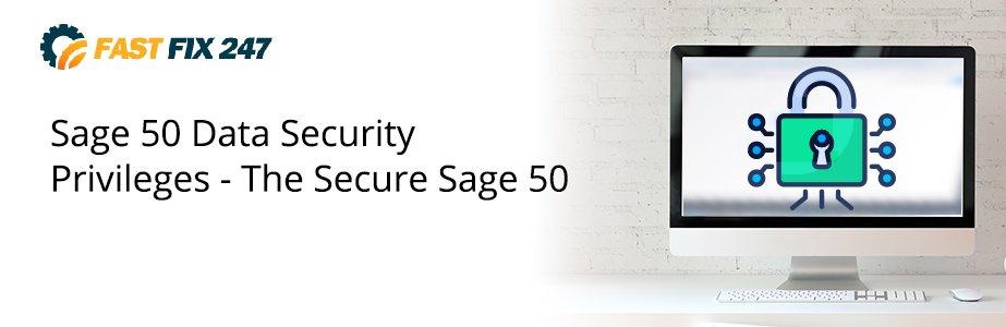 sage 50 data security privileges